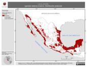 Mapa ilustrativo de Larus atricilla (gaviota reidora) invierno. Distribución potencial.