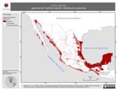 Mapa ilustrativo de Larus pipixcan (gaviota de Franklin) tránsito. Distribución potencial.