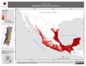 Mapa ilustrativo de Lasiurus ega (Murciélago). Distribución potencial. La proyección citada, es exclusiva para el diseño de esta imagen.
