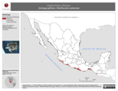 Mapa ilustrativo de Lepidochelys olivacea (tortuga golfina). Distribución potencial. La proyección citada, es exclusiva para el diseño de esta imagen.