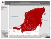 Mapa ilustrativo de Leptotila jamaicensis (paloma caribeña) residencia permanente. Distribución potencial.