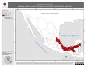 Mapa ilustrativo de Leptotila plumbeiceps (paloma cabeza ploma) residencia permanente. Distribución potencial.