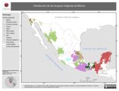 Mapa ilustrativo de Distribución de las lenguas indígenas de México