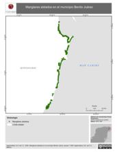 Mapa ilustrativo de Manglares aislados en el municipio Benito Juárez