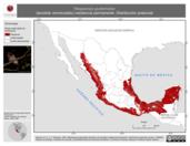 Mapa ilustrativo de Megascops guatemalae (tecolote vermiculado) residencia permanente. Distribución potencial.