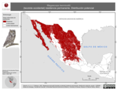 Mapa ilustrativo de Megascops kennicottii (Tecolote occidental) residencia permanente. Distribución potencial.