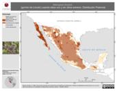 Mapa ilustrativo de Melospiza lincolnii (gorrión de Lincoln) usando sitios con y sin clima extremo. Distribución Potencial