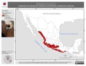 Mapa ilustrativo de Melanerpes chrysogenys (carpintero enmascarado) residencia permanente. Distribución potencial.