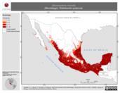 Mapa ilustrativo de Micronycteris microtis (Murciélago). Distribución potencial. La proyección citada, es exclusiva para el diseño de esta imagen.