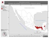 Mapa ilustrativo de Microrhopias quixensis (hormiguero ala punteada) residencia permanente. Distribución potencial.