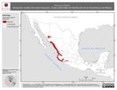 Mapa ilustrativo de Micrurus distans (Serpiente coralillo del oeste mexicano). Área de distribución potencial. La proyección citada, es exclusiva para el diseño de esta imagen.