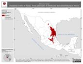 Mapa ilustrativo de Micrurus tener (Serpiente coralillo de Texas). Área de distribución potencial. La proyección citada, es exclusiva para el diseño de esta imagen.