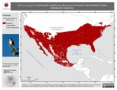 Mapa ilustrativo de Mimus polyglottos (centzontle norteño) en época de invernación del Hemisferio Norte. Distribución potencial.