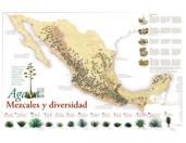 Mapa ilustrativo de Mezcales y diversidad