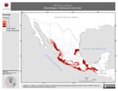 Mapa ilustrativo de Molossus aztecus (Murciélago). Distribución potencial.