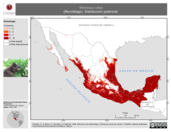 Mapa ilustrativo de Molossus rufus (Murciélago). Distribución potencial.
