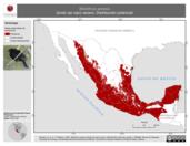 Mapa ilustrativo de Molothrus aeneus (tordo ojo rojo) verano. Distribución potencial.