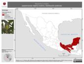 Mapa ilustrativo de Myiarchus crinitus (papamoscas viajero) invierno. Distribución potencial.