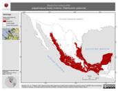 Mapa ilustrativo de Myiarchus tuberculifer (papamoscas triste) invierno. Distribución potencial.