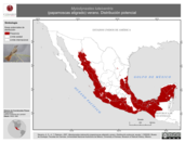 Mapa ilustrativo de Myiodynastes luteiventris (papamoscas atigrado) verano. Distribución potencial.