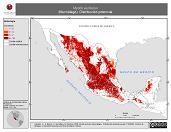 Mapa ilustrativo de Myotis auriculus (Murciélago). Distribución potencial.