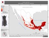 Mapa ilustrativo de Myotis nigricans (Murciélago). Distribución potencial.