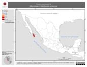 Mapa ilustrativo de Myotis peninsularis (Murciélago). Distribución potencial.