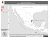 Mapa ilustrativo de Neotoma angustapalata (Rata magueyera). Distribución potencial.