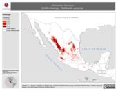 Mapa ilustrativo de Neotamias durangae (Ardilla Durango). Distribución potencial.