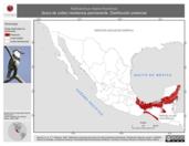 Mapa ilustrativo de Notharchus macrorhynchos (buco de collar) residencia permanente. Distribución potencial.