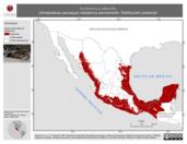Mapa ilustrativo de Nyctidromus albicollis (chotacabras pauraque) residencia permanente. Distribución potencial.