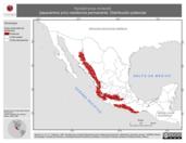 Mapa ilustrativo de Nyctiphrynus mcleodii (tapacamino prío) residencia permanente. Distribución potencial.