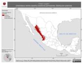 Mapa ilustrativo de Ortalis wagleri (chachalaca vientre-castaño) residencia permanente. Distribución potencial.