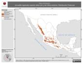 Mapa ilustrativo de Otus trichopsis (el autillo bigotudo) usando sitios con y sin clima extremo. Distribución Potencial