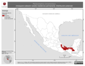 Mapa ilustrativo de Pachyramphus cinnamomeus (mosquero-cabezón canelo) residencia permanente. Distribución potencial.