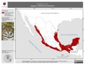 Mapa ilustrativo de Panthera onca (jaguar). Distribución potencial. La proyección citada, es exclusiva para el diseño de esta imagen.