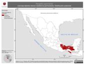 Mapa ilustrativo de Panyptila cayennensis (vencejo-tijereta menor) residencia permanente. Distribución potencial.