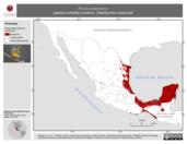 Mapa ilustrativo de Parula americana (parula norteña) invierno. Distribución potencial.