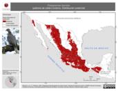Mapa ilustrativo de Patagioenas fasciata (paloma de collar) invierno. Distribución potencial.