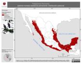 Mapa ilustrativo de Patagioenas flavirostris (paloma morada) residencia permanente. Distribución potencial.