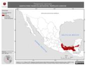 Mapa ilustrativo de Patagioenas nigrirostris (paloma triste) residencia permanente. Distribución potencial.