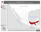 Mapa ilustrativo de Patagioenas speciosa (paloma escamosa) residencia permanente. Distribución potencial.