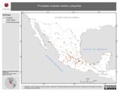 Mapa ilustrativo de Principales ciudades medias y pequeñas