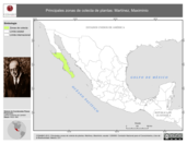 Mapa ilustrativo de Martínez, Maximinio. La proyección citada, es exclusiva para el diseño de esta imagen.