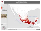 Mapa ilustrativo de Peromyscus aztecus (Ratón). Distribución potencial.