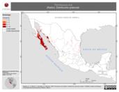 Mapa ilustrativo de Peromyscus eva (Ratón). Distribución potencial.