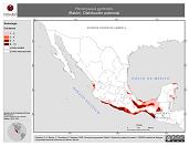 Mapa ilustrativo de Peromyscus gymnotis (Ratón). Distribución potencial. La proyección citada, es exclusiva para el diseño de esta imagen.