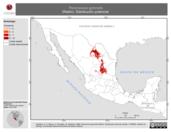 Mapa ilustrativo de Peromyscus gymnotis (Ratón). Distribución potencial.