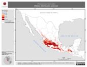 Mapa ilustrativo de Peromyscus hylocetes (Ratón). Distribución potencial.