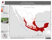 Mapa ilustrativo de Peromyscus mexicanus (Ratón). Distribución potencial. La proyección citada, es exclusiva para el diseño de esta imagen.